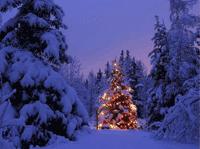 weihnachten12